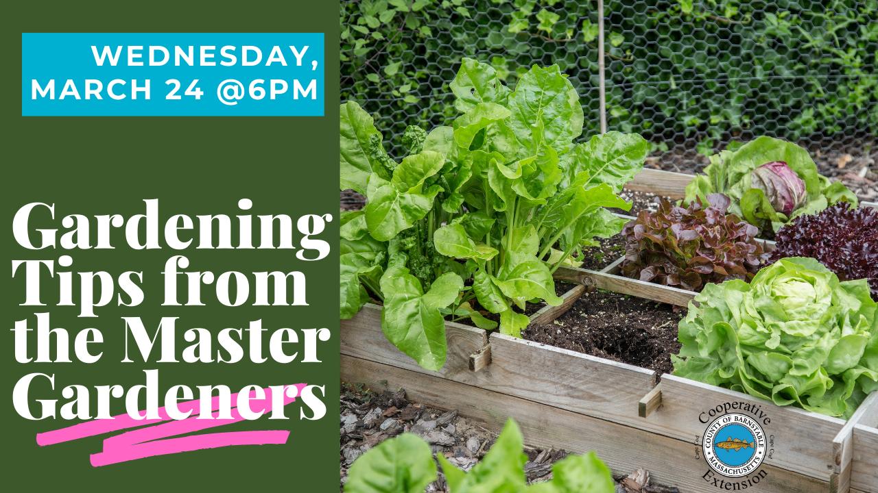 Master Gardeners Talk thumbnail