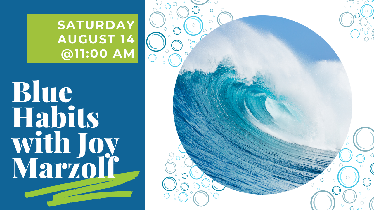 """A blue wave and text that says """"Blue Habits with Joy Marzolf."""""""