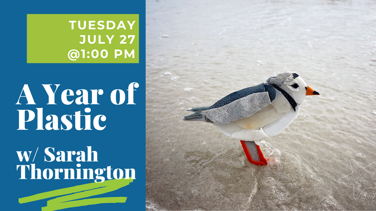 """Text that says """"A Year of Plastic"""" with an image of a felt crafted seagull"""